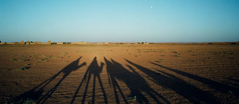 Sahara Desert, Merzouga, Erg Chebbi, Camel Treks