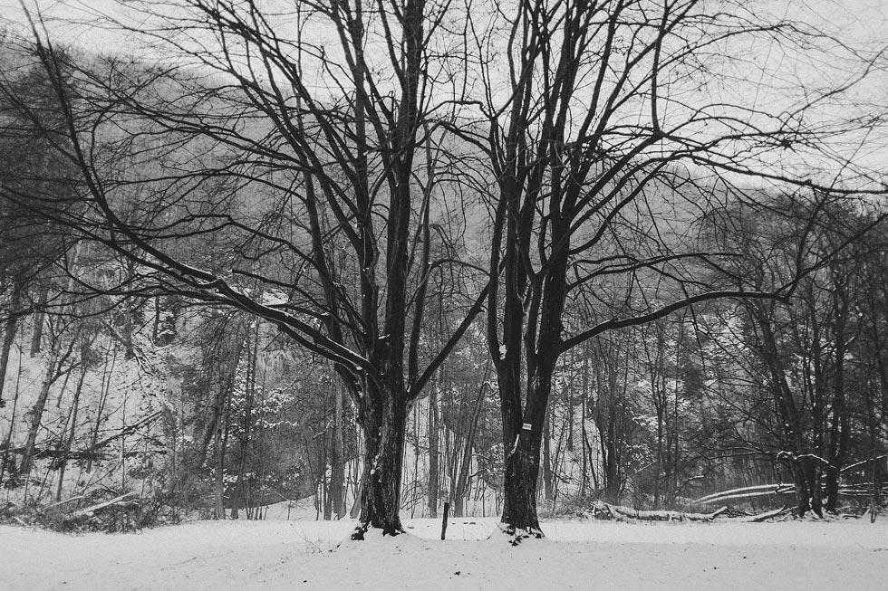 Warsaw Winters