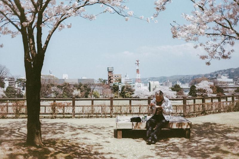 Hanami in Kanazawa, Tomasz Wagner, Cherry Blossoms in Japan, Contax G2, Japan 35mm Film Photography