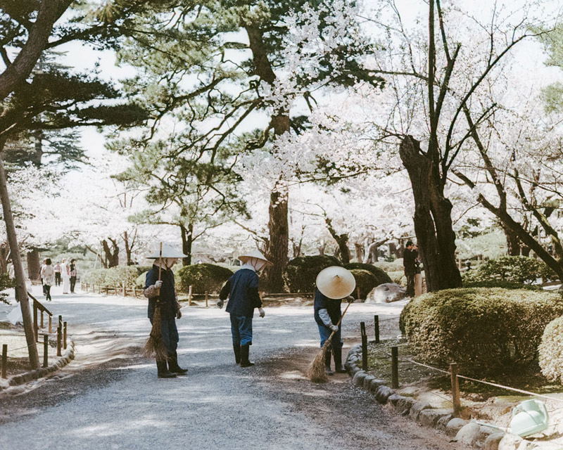 Hanami in Japan, Tomasz Wagner, Kenrokuen Garden, Kanazawa, Contax G2, Japan 35mm Film Photography