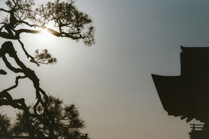 Kiyomizudera Temple, Tomasz Wagner, Kyoto, Contax G2, Japan 35mm Film Photography