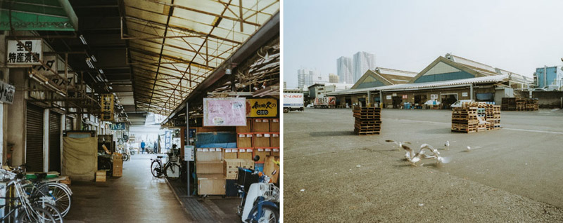 Tsukiji, Tomasz Wagner, Tokyo After Hours, Contax G2, Japan 35mm Film Photography