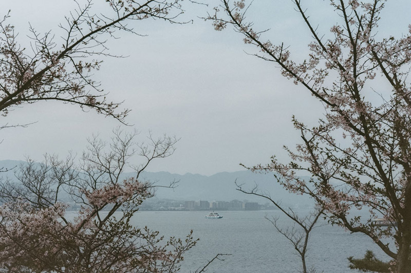 Tomasz Wagner, Itsukushima, Hiroshima Bay, Hiroshima Prefecture, Japanese Scenic Sites