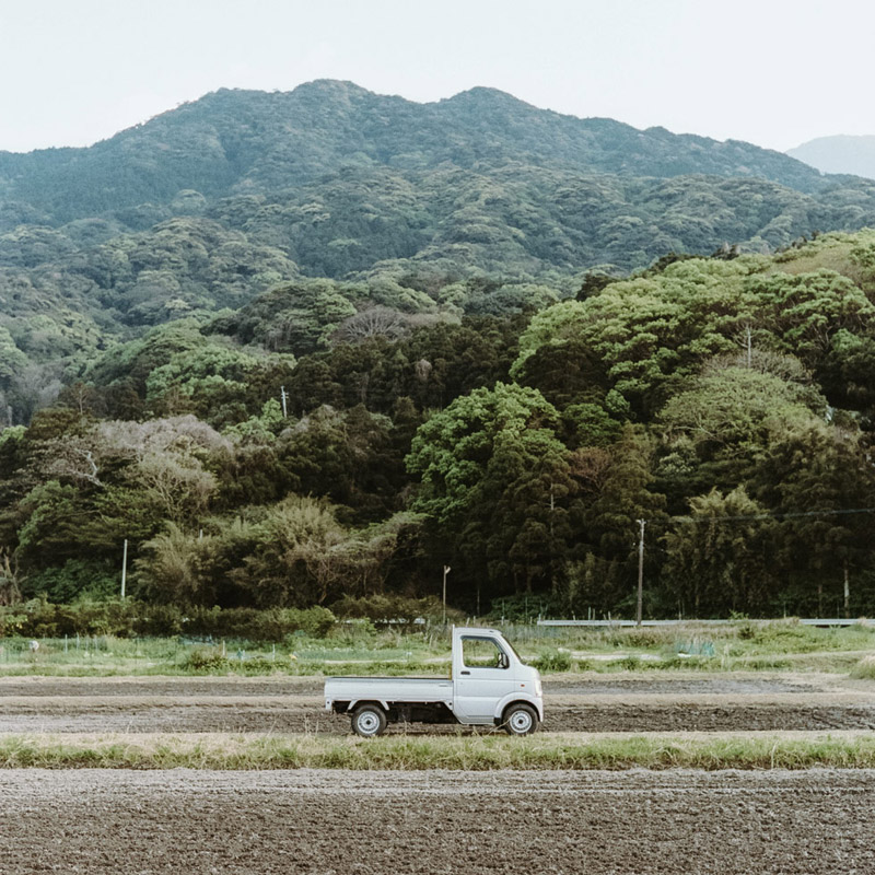 Farming in Rural Japan, Yakushima, Tomasz Wagner