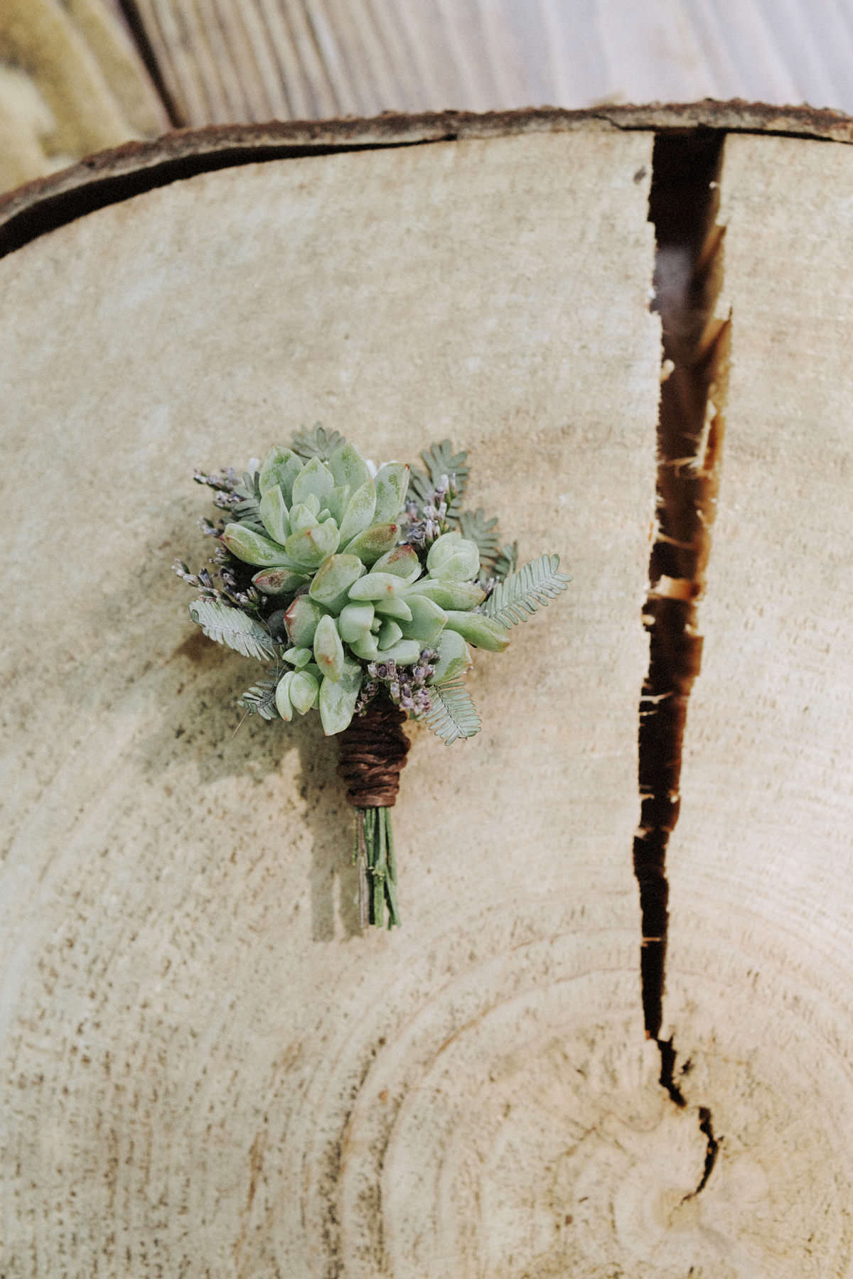 succulent boutonniere delovely creative