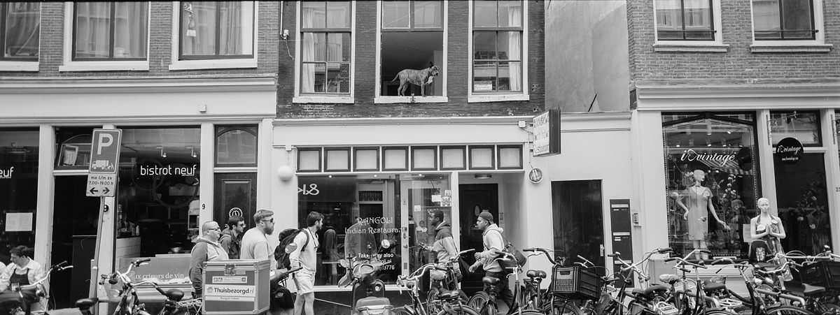 Joordan Neighbourhood Amsterdam netherlands street photography on hasselblad xpan film camera and kodak trix400