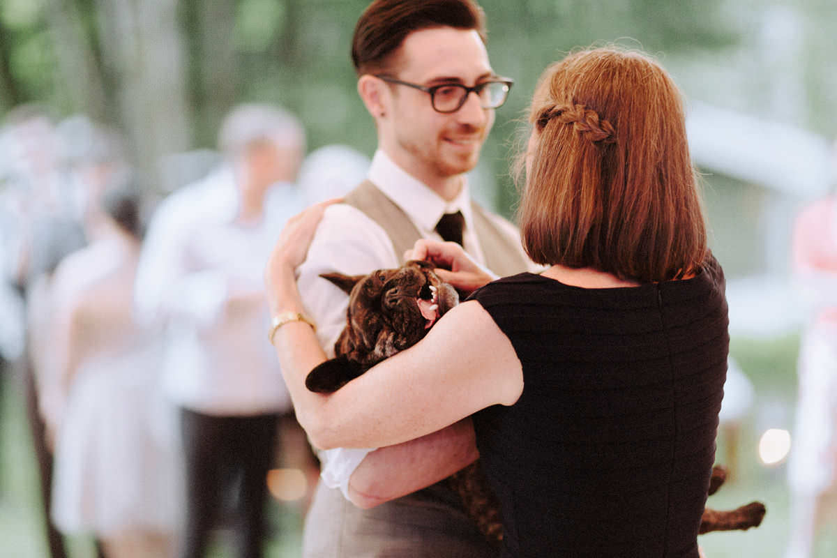 cute french bulldog at campsite wedding