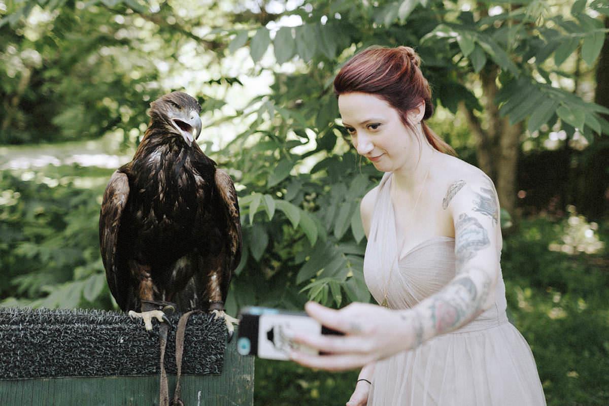 radical raptors falconry whistler