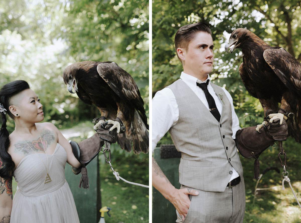 radical raptors falconry vancouver