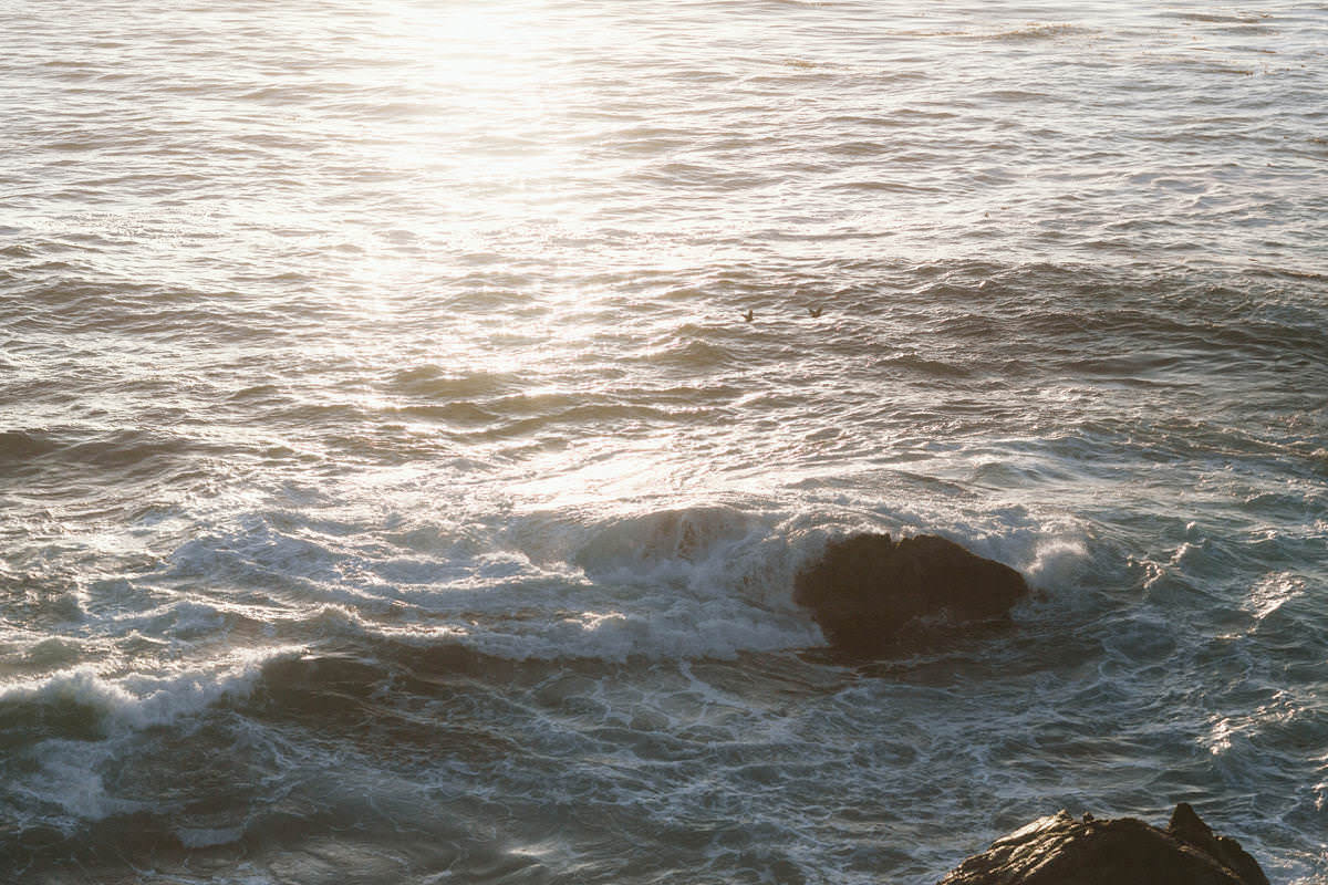 oregon coast elopements in 2015
