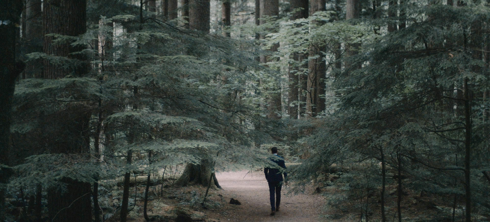 forest elopement vancouver