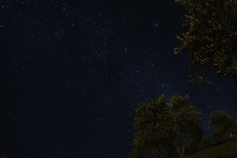 night sky waiheke