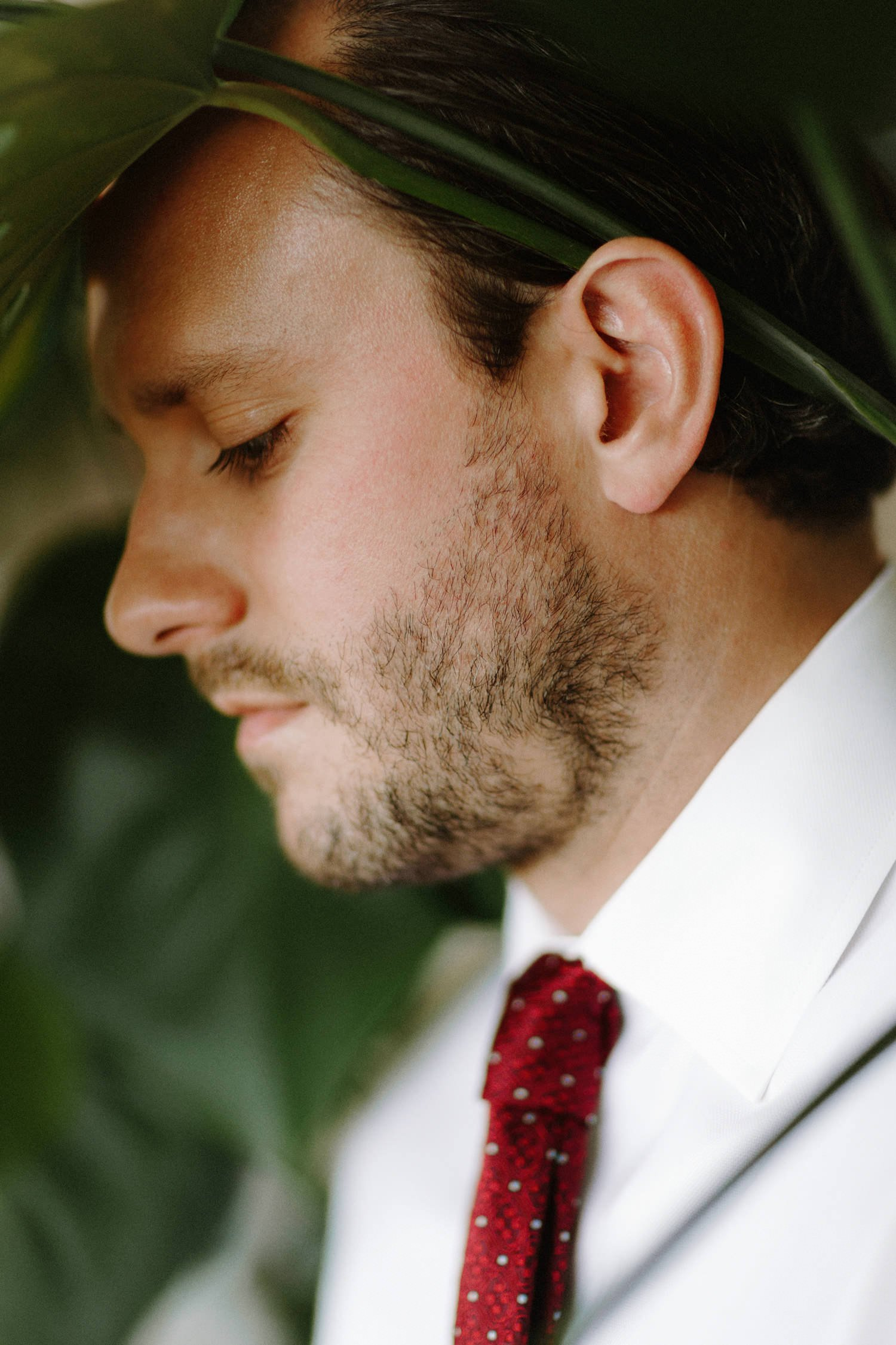 portrait of groom with tropical house plant