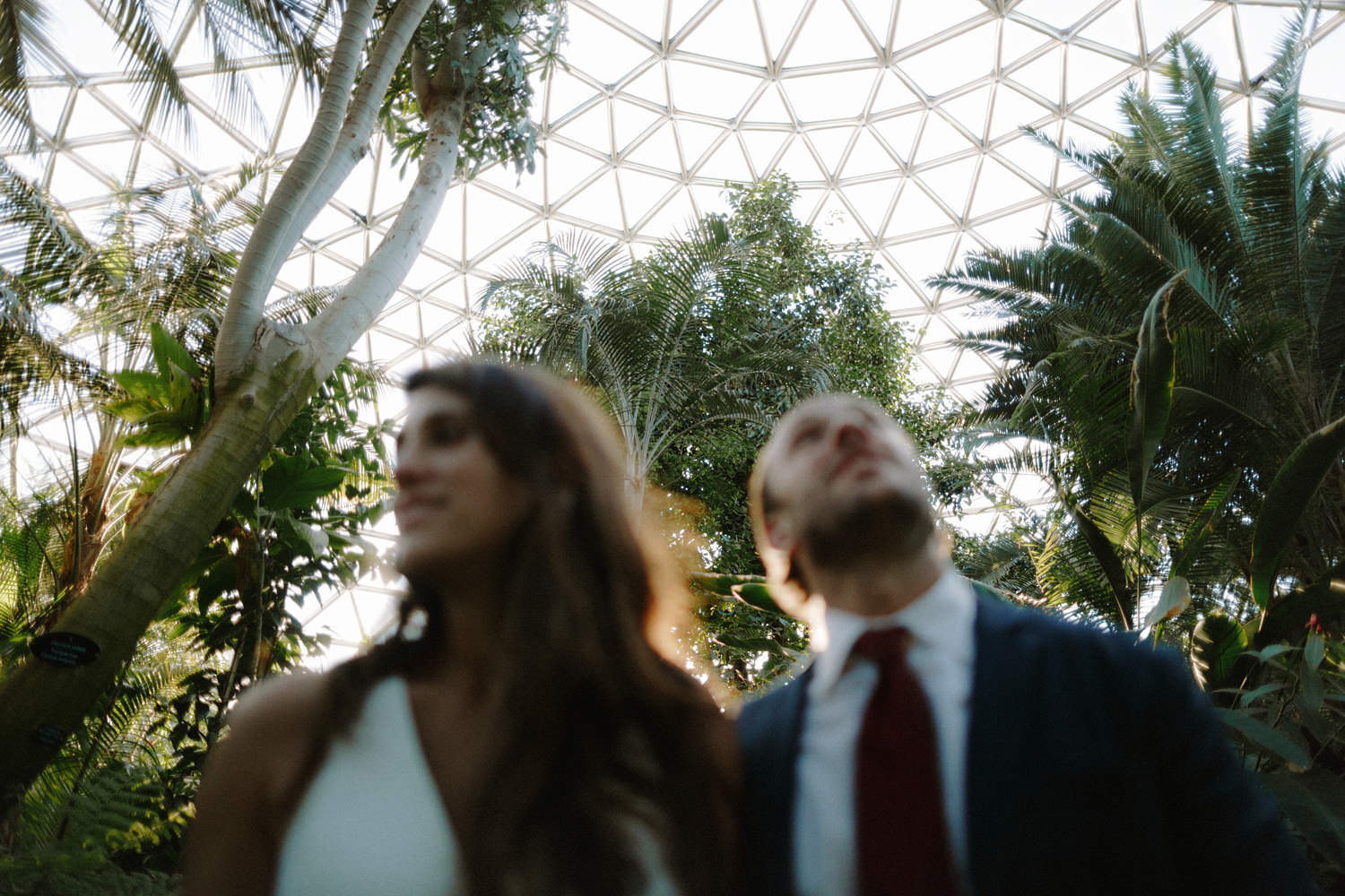 bride and groom wedding portraits inside bloedel conservatory