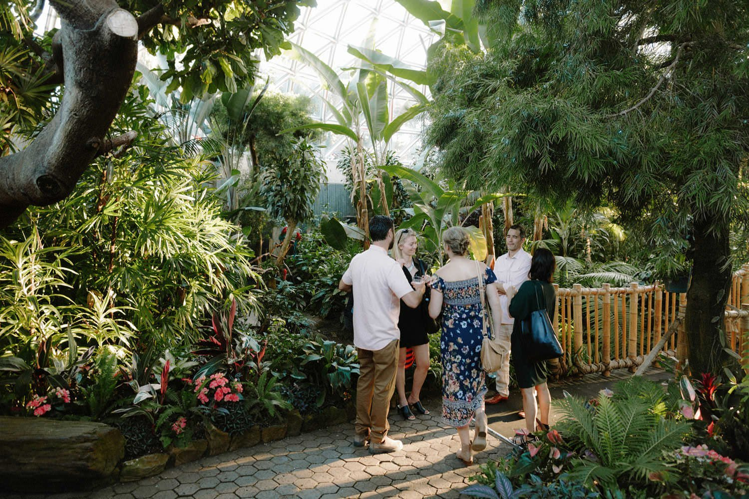 unique indoor wedding venues in vancouver including bloedel conservatory