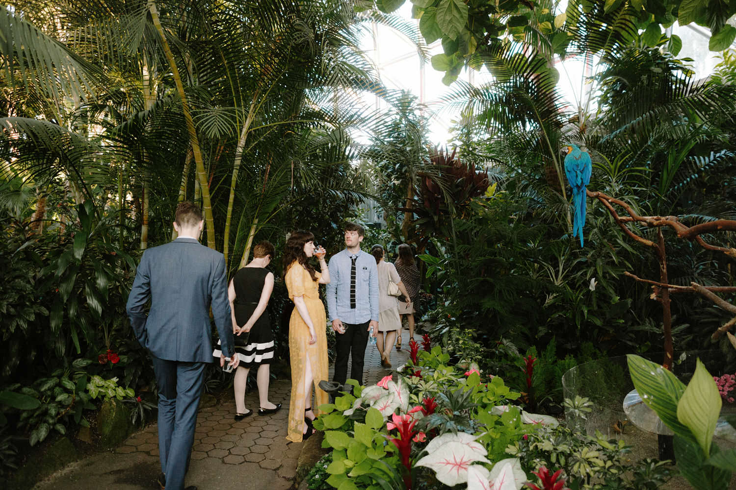 wedding receptions at bloedel conservatory
