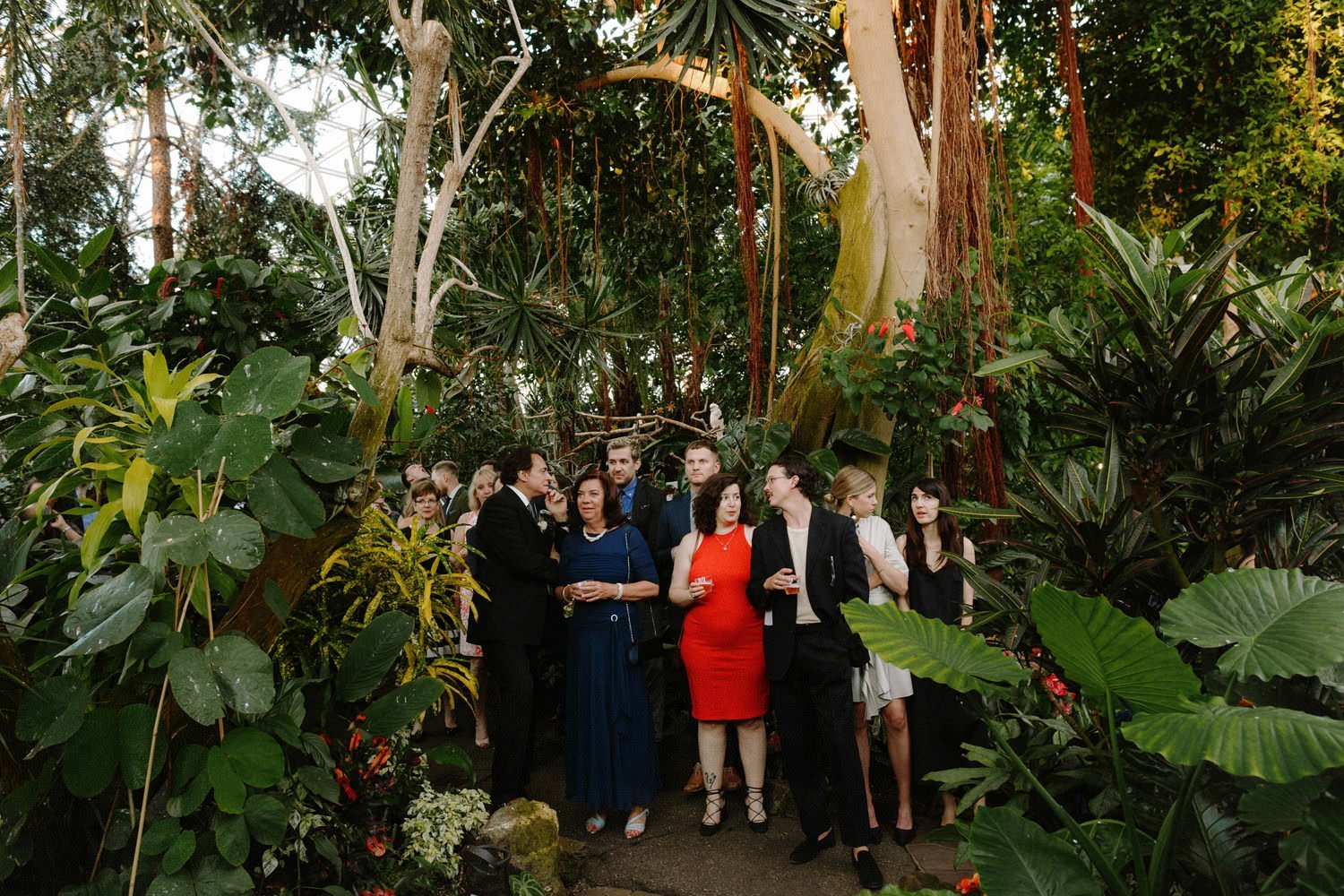 bloedel conservatory is an intimate wedding venue