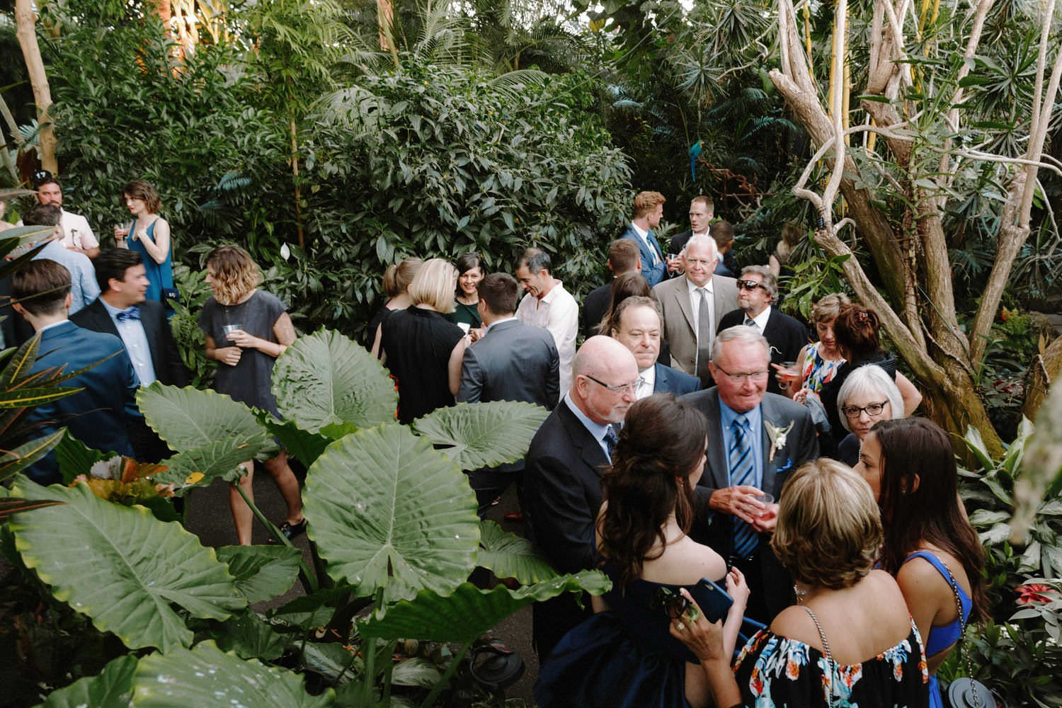 renting bloedel conservatory for weddings
