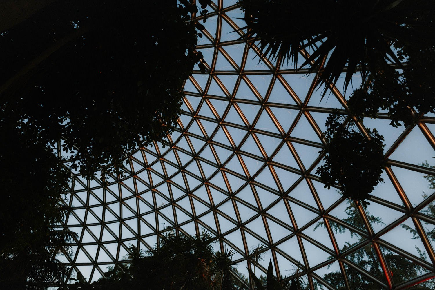 cocktail reception at bloedel conservatory