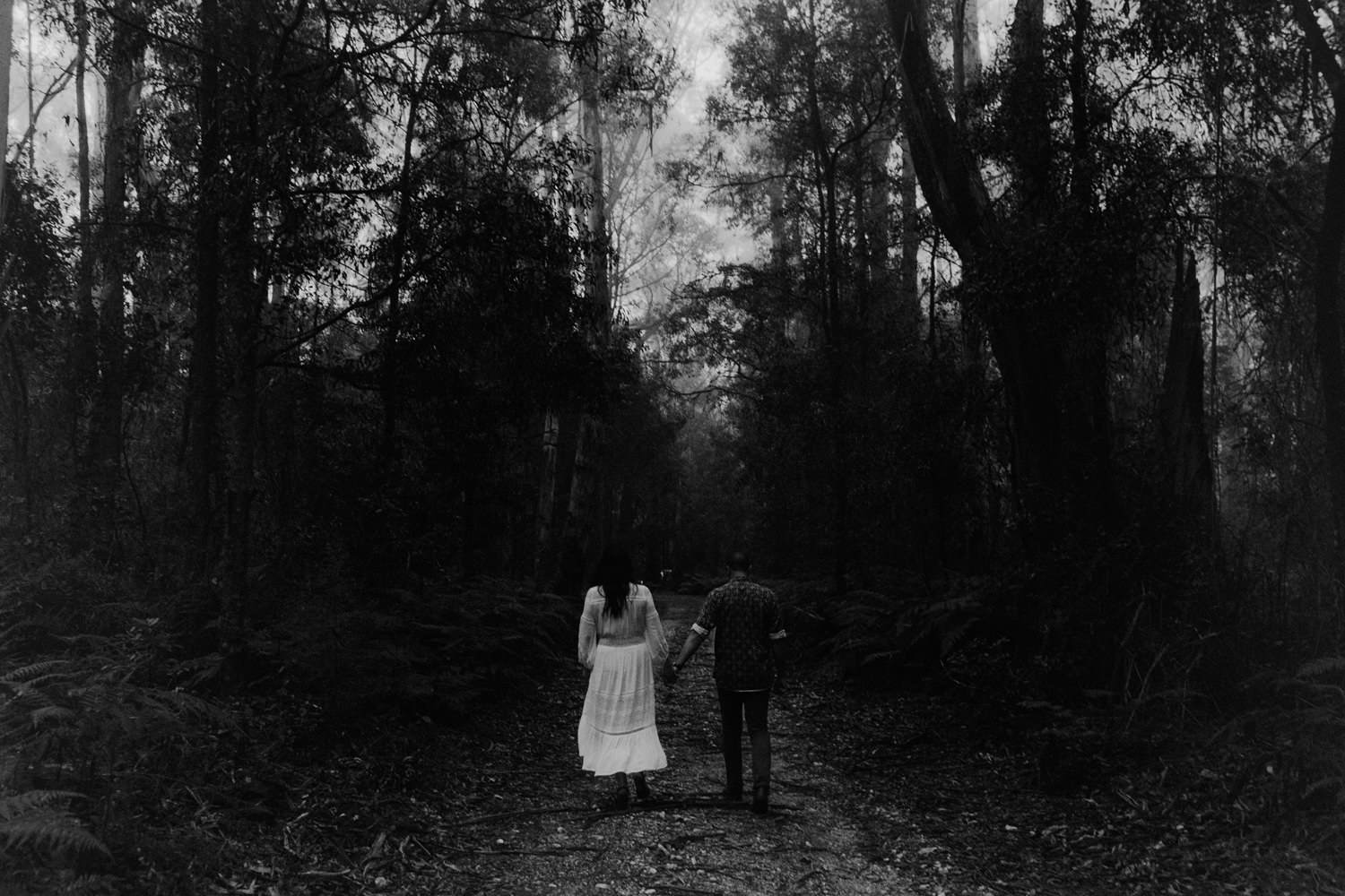moody pre wedding photos kangaroo valley