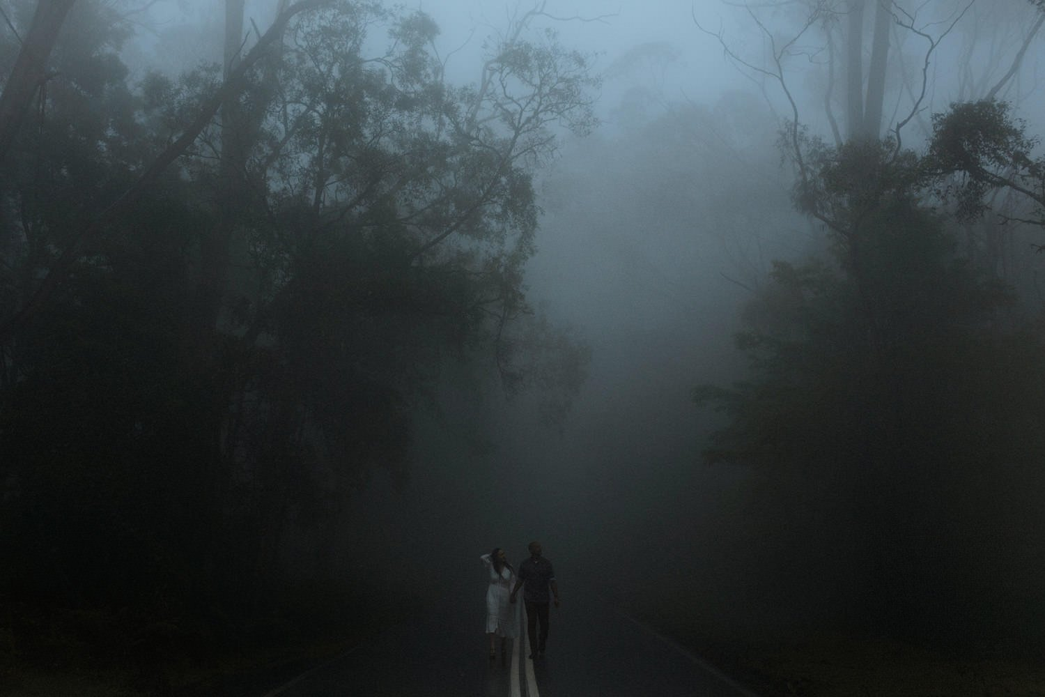 foggy couple session in kangaroo valley