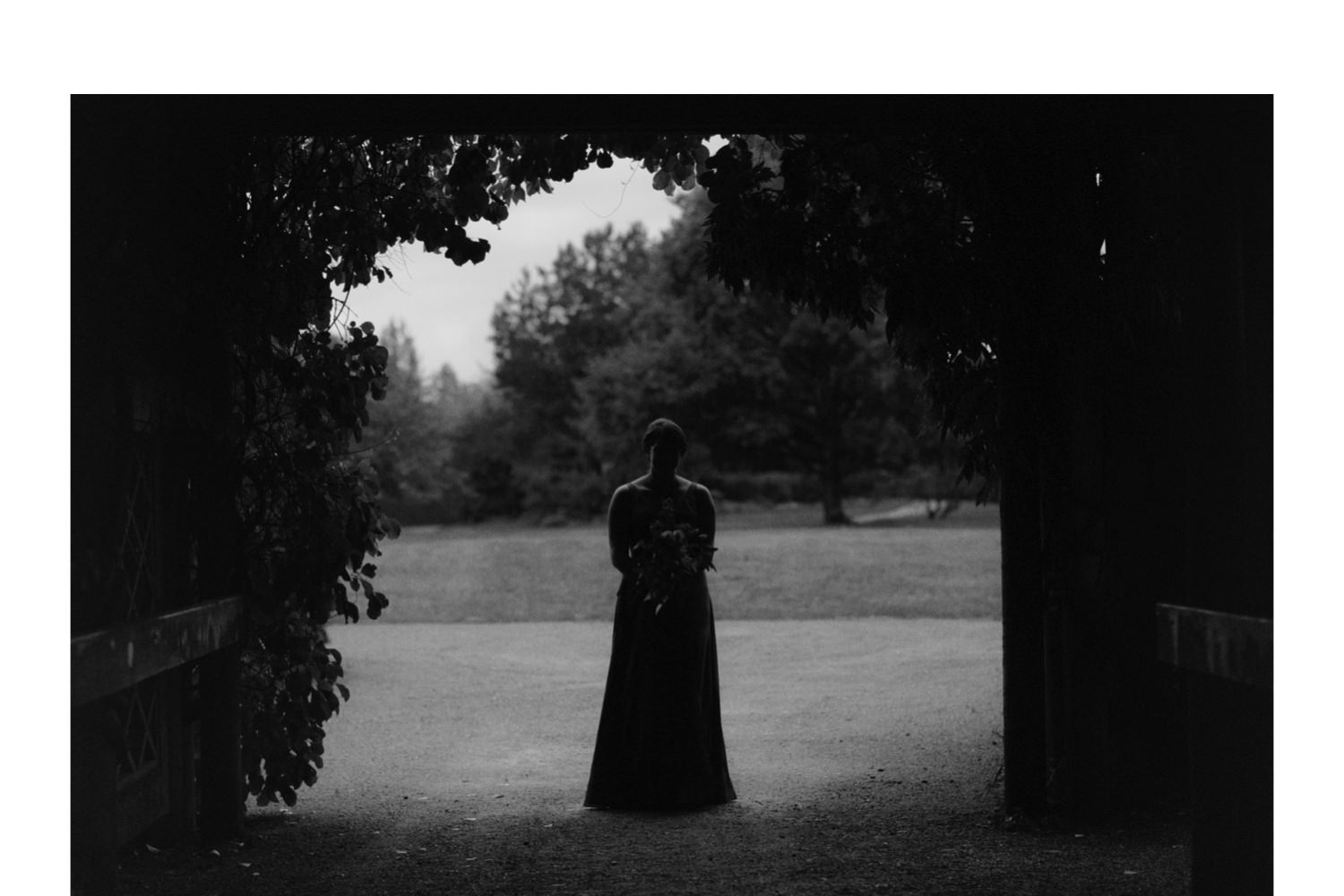 silhouette photo of maid of honour framed by arbour leaves