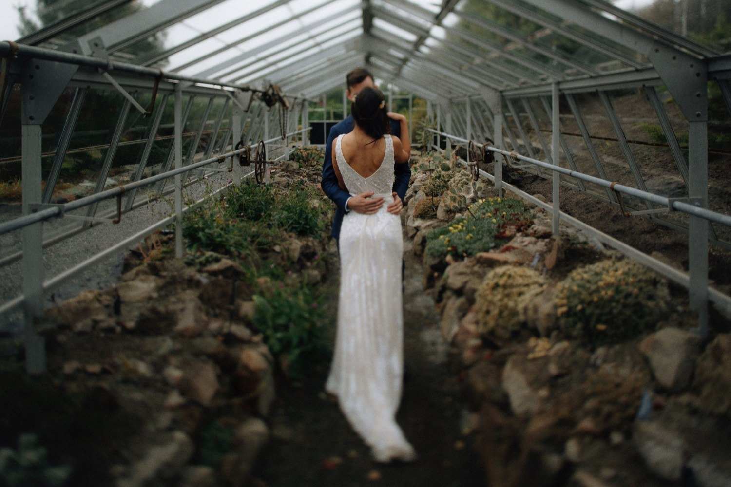 wedding photos at ubc botanical garden desert plants greenhouse